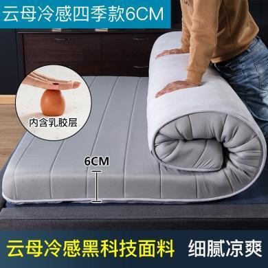 羽芯家纺   新品亲肤舒适乳胶床垫加厚保暖乳胶床垫