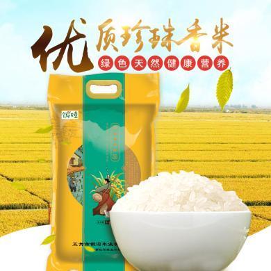 正宗五常大米 东北大米 新米上市 珍珠米大米10斤