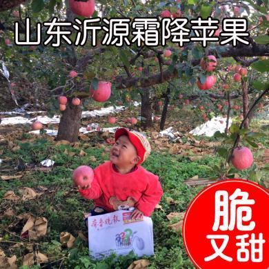 华朴上品 山东沂源霜降苹果红富士 75-85mm带箱10斤装 新鲜苹果