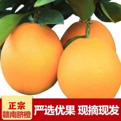 【现摘现发 鲜甜多汁】赣南脐橙  橙子  香醇浓厚 鲜甜多汁 新鲜水果   现摘现发 中果
