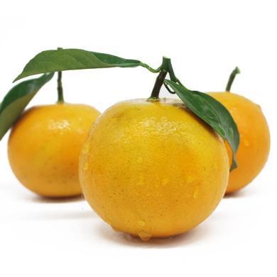 华朴上品 永兴冰糖橙子5斤装27个左右 新鲜水果橙子