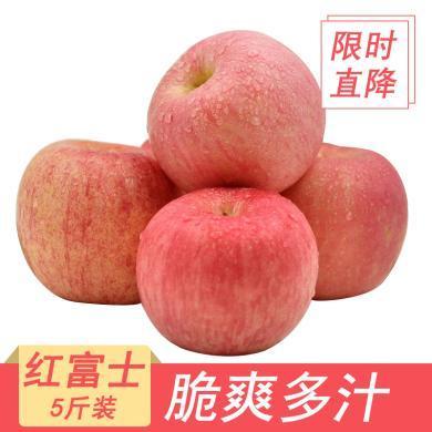 華樸上品 煙臺蘋果紅富士 5斤裝8-12個新鮮蘋果水果