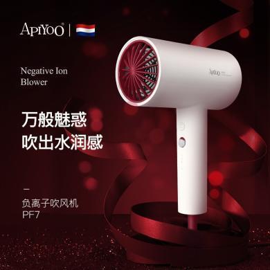 ApiYoo 荷兰艾优 负离子电吹风机PF7 家用恒温大功率发廊级干护发【配风嘴】