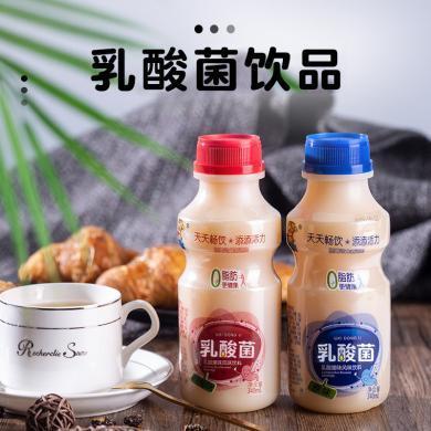 原味胃動力乳酸菌飲品兒童早餐牛奶酸奶飲料整箱340mlx12大瓶整箱