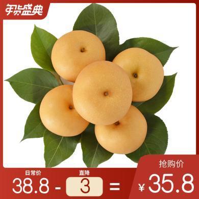 華樸上品 山東秋月梨4.5-5斤裝中果7-9個梨子 新鮮水果梨子