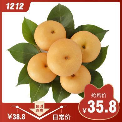 华朴上品 山东秋月梨4.5-5斤装中果7-9个梨子 新鲜水果梨子