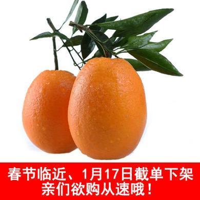 【順豐包郵】華樸上品 秭歸臍橙長虹臍橙10斤裝 新鮮水果橙子
