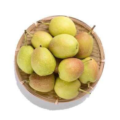 【順豐包郵】HUAPU 正宗新疆庫爾勒香梨5斤裝 新鮮水果梨子 成都倉發貨