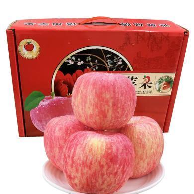 HUAPU  洛川蘋果紅富士禮盒裝12個大果90mm 新鮮水果蘋果產地直發