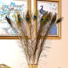 DEVY 仿真孔雀翎毛 装饰孔雀羽毛家居客厅玄关摆件花瓶搭配饰品