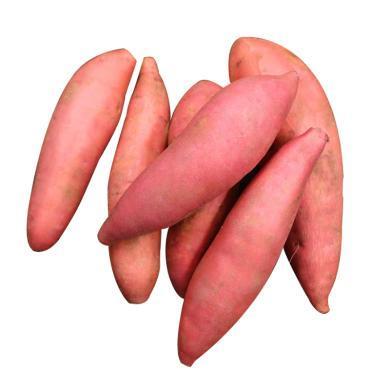 華樸上品 山地青島西瓜紅蜜薯紅薯地瓜
