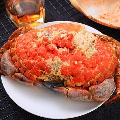 崇鮮 英國面包蟹 鮮活即食熟凍1600-1300克/兩只面包螃蟹發財蟹黃金蟹