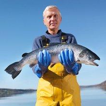 崇鲜进口三文鱼整条12-10斤冰鲜三文鱼