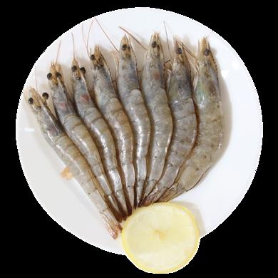 崇鲜冷冻厄瓜多尔白虾1.5kg海鲜大虾