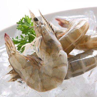 崇鮮冷凍厄瓜多爾白蝦1.5kg海鮮大蝦