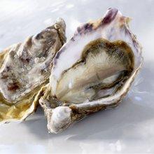 崇鲜台湾海峡鲜活生蚝50粒5kg牡蛎海蛎海鲜