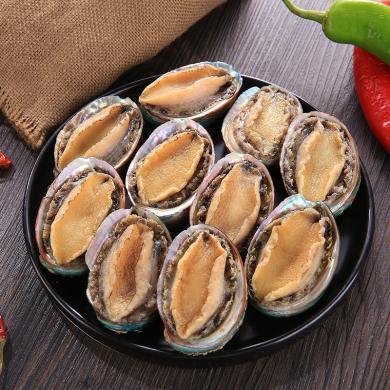鮮活冷凍鮑魚 11-10只裝500克新鮮鮮活大個海鮮鮑魚