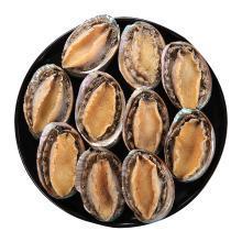 鲜活冷冻鲍鱼 11-10只装500克新鲜鲜活大个海鲜鲍鱼