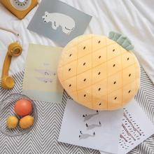 羽芯家纺   新款清新水果刺绣抱枕靠垫靠枕枕头
