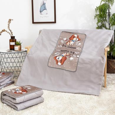 DREAM HOME  新款天絲抱枕被子抱枕靠墊升級版可拆洗693217