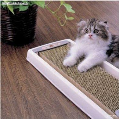 爱丽思IRIS猫用抓板 CTS-540 橙色 橘色