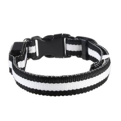 寵物用品狗狗發光項圈可充電LED頸圈泰迪金毛大中小型犬夜光項圈(2.5絲網項圈)充電版
