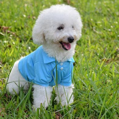 寵物服裝 泰迪金毛狗狗衣服 狗衣服批發 泰迪吉娃娃polo衫-純色POLO