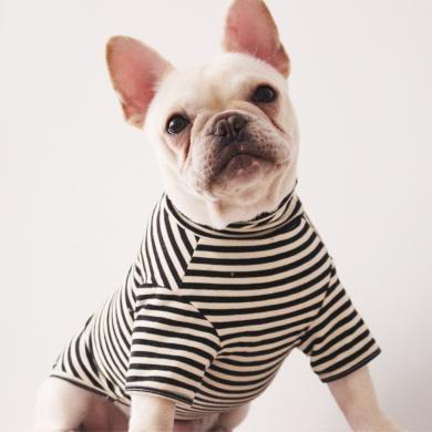 高亚?#21512;?#26032;款宠物服装泰迪宠物法国斗牛犬狗衣服条纹