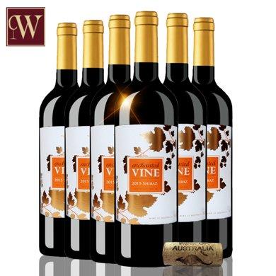 红酒澳洲原瓶进口红酒 魔幻葡叶色拉子红葡萄酒 750ml 六支整箱 聚会宴席佳选