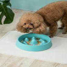 佐敦朱迪Jordan&Judy慢食盆 貓狗防噎碗泰迪金毛大型犬貓狗飯碗緩食飯盆  藍色
