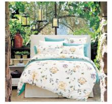 KINTHERI/金丝莉 绿色时尚套件 丝绵全棉磨毛床品床上用品婚庆家纺四件套