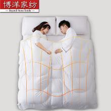 博洋家紡分區睡眠95白鵝絨被