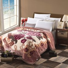 羽芯家紡 加厚雙層拉舍爾毛毯 珊瑚絨毛毯 婚慶毯子冬季蓋毯YC850031