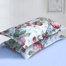 帝豪家纺 枕套一对 纯棉全棉单人枕头套 花香丽人