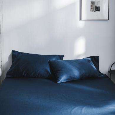 DREAM HOME 全棉純色水洗貢棉單品枕套純棉枕套學生枕套【一對裝】686174