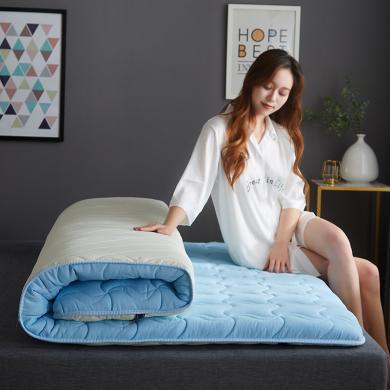 DREAM HOME 家用防滑床墊 學生宿舍床墊上下鋪床墊 加厚床墊約5cm 716225