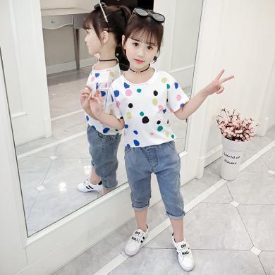 美純衣天使夏季短袖圓點彩色卡通圓領上衣棉T寬松彈力女童T恤MC牛奶t