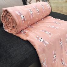 领秀范儿夏季空调毯子被子床垫毛毯垫法兰加绒毛绒床单法莱珊瑚绒单儿童被空调被88003