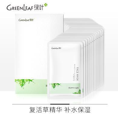 (面膜24片)綠葉復活草深層補水保濕面膜24片 補水面膜收毛孔控油含精華液