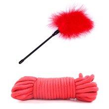 碧雅 SM另类性虐十件束缚捆绑套装成人情趣性用品玩具 红色水钻 手脚铐口塞皮鞭性虐调教器具
