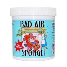 【美国】Bad Air Sponge空气净化剂400g