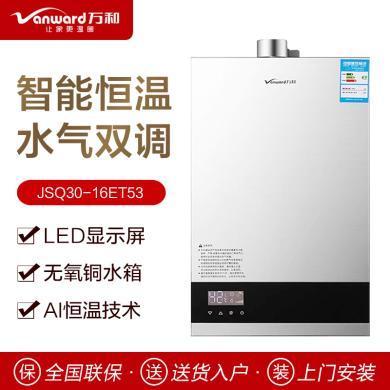 萬和熱水器JSQ30-16ET53-16升智能恒溫熱水器天然氣熱水器燃氣熱水器