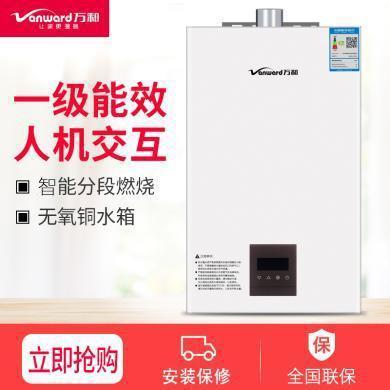 萬和熱水器JSQ24-12ST16熱水器12升智能恒溫熱水器 天然氣強排式熱水器【不可安裝在浴室內】