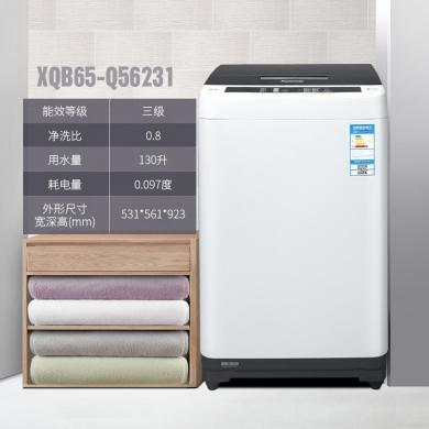 ?#19978;?Panasonic) XQB65-Q56231 全自动波轮洗衣机 6.5公斤 带预约 一键洗 静音洗涤 人工智能