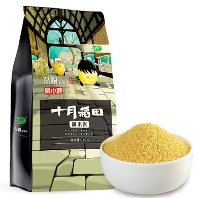 十月稻田黄小米1kg粟米粥米农家五谷杂粮