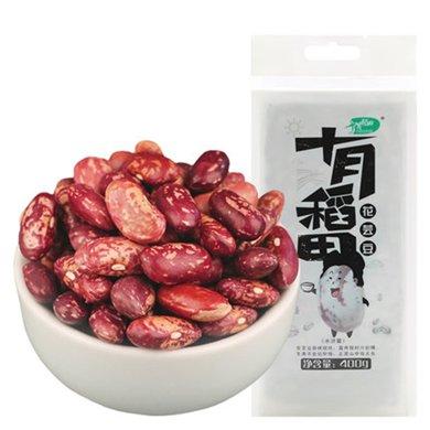 十月稻田 花蕓豆400g 五谷雜糧 顆粒飽滿