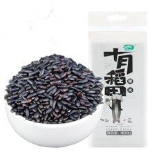 【满199减20】十月稻田 黑米400g 无染色东北黑米五谷杂粮粗粮