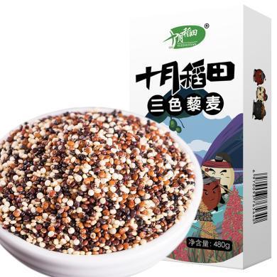 十月稻田三色藜麥黑藜麥、白藜麥、紅藜麥塑身雜糧粗糧代餐480g(滿50包郵)