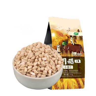 十月稻田小麦仁 1kg东北粗粮  营养杂粮真空包装