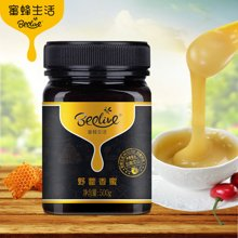 蜜蜂生活野藿香蜂蜜500g 滋养肠胃天然野生纯蜂蜜农家自产蜂蜜